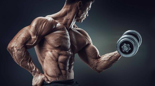 تمرینات دوره ای بدنسازی و 6 نکته مهم آن